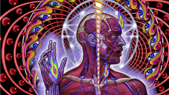 Tool lateralus cover art tribute to my friend